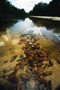River stones in the Hawkesbury River at Yarramundi near Navua Reserve.