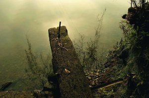 Remains of an old punt at Sackville.
